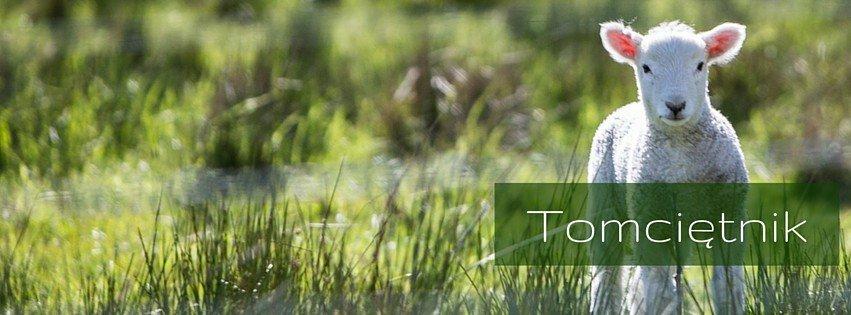 Tomciętnik - opowieść o małym Tomeczku